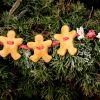 DIY świąteczne,czyli Gingerbread Man