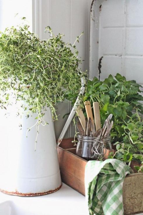 zioła w emaliowanym dzbanku i drewnianej skrzynce w aranzacji kuchennej